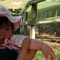 ダウン症児、めいめい牧場