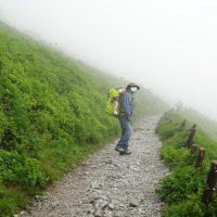 霧に包まれた伊吹山の遊歩道